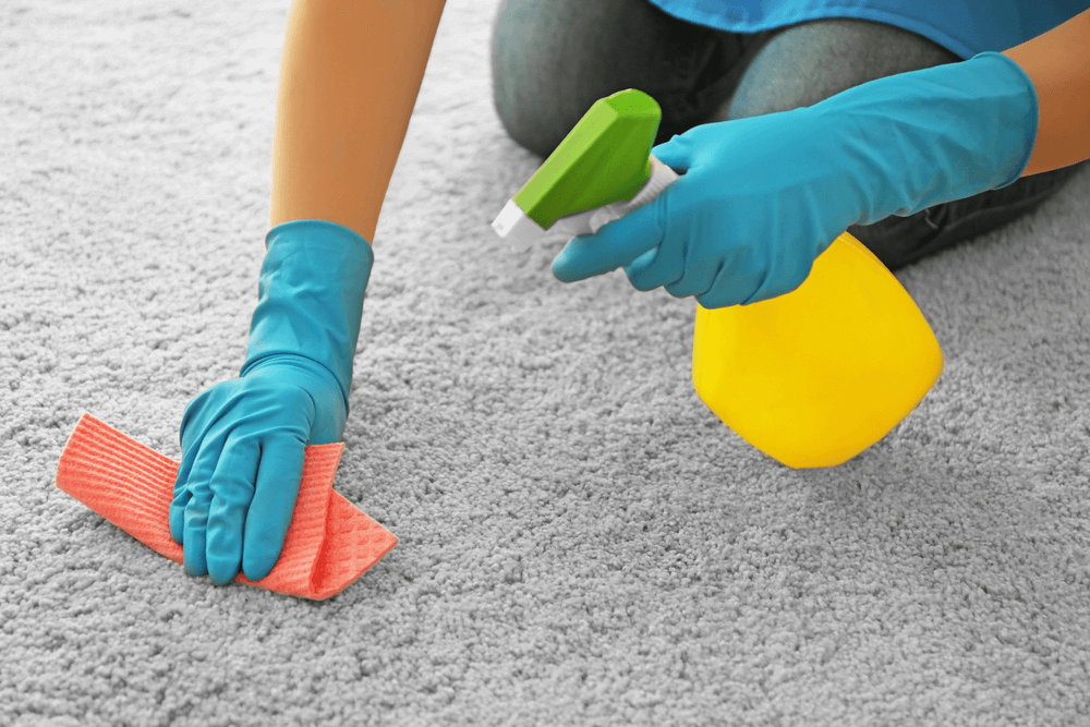 homemade-carpet-cleaning-solution